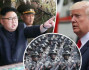 World War 3? Kim Jong-un orders army to be ready to strike at all times