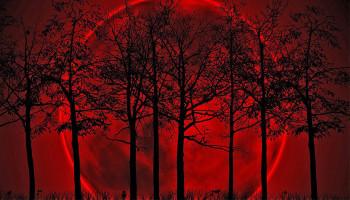 Հունվարի վերջին երկնքում «արյունոտ գերլուսին» կլինի