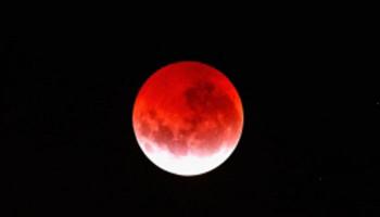 Երկրի բնակիչները կիսվել են «արյունոտ» և երկնագույն Լուսնի լուսանկարներով