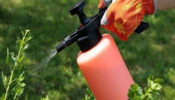 Ի՞նչ է անհրաժեշտ թունաքիմիկատների օգտագործման հետևանքով առաջացող առողջական խնդիրներից խուսափելու համար