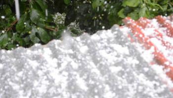 Ստեփանակերտում ուժգին կարկուտը ոչնչացրել է բերքը (տեսանյութ)