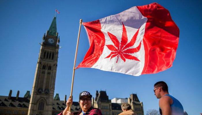 Canada Senate approves recreational use of marijuana