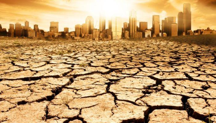 2019 год может стать самым жарким в истории человечества