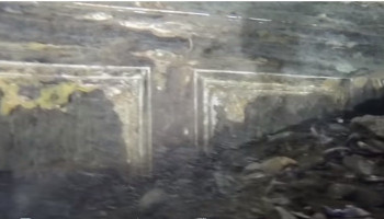 Экспедиция «Нептун» Романа Дунаева в Крыму