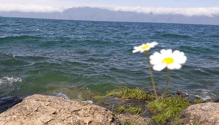Եղանակը Հայաստանում ու Արցախում