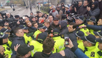 Количество задержанных у парламента Грузии продолжает расти