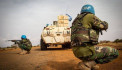 ՄԱԿ-ի 96 խաղաղապահի մոտ կորոնավիրուս է հայտնաբերվել