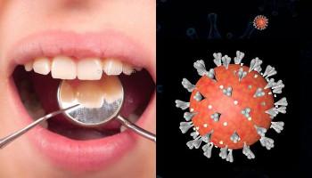 Ատամնաբույժները հայտնաբերել են կորոնավիրուսի նոր ախտանշաններ