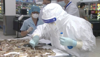 Coronavirus found on shrimp packaging from Ecuador, China suspends imports from 23 meat companies