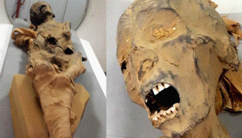 CT scan reveals the story behind the 'mummy of the screaming woman' from Deir El-Bahari's Royal Cachette