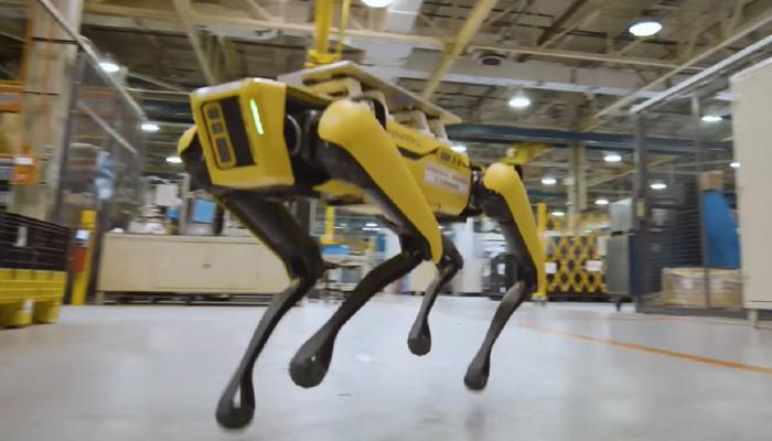 Пушистик и Пятнышко: #Ford завел на заводе собак-роботов