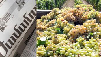 «Жаманак»: Закупочная цена винограда 105 драм за 1 кг., ожидаются новые протесты
