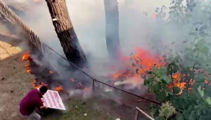 В Турции и в Израиле пожарные расчеты борются с лесными пожарами
