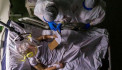 WHO reports surge in coronavirus deaths