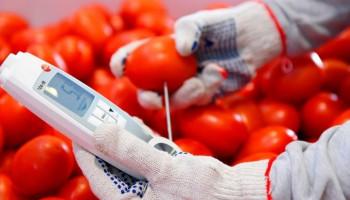 В России обнаружили новую партию зараженных томатов из Азербайджана