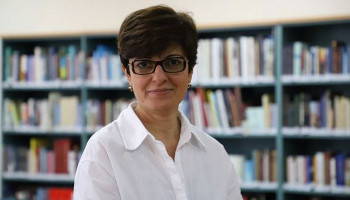 Comment by Anna Aghadjanian regarding the adoption of the European Parliament's annual resolution-report on Turkey